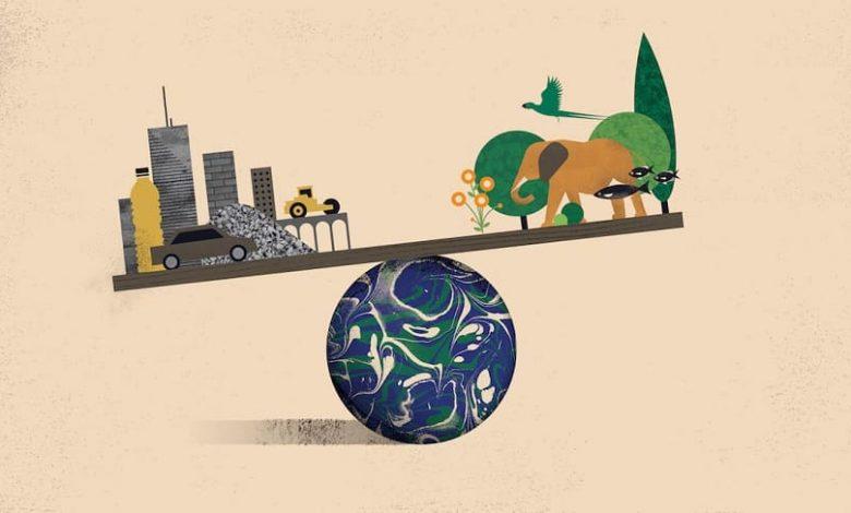 کشف-بزرگ-هوش-مصنوعی-درباره-کره-زمین